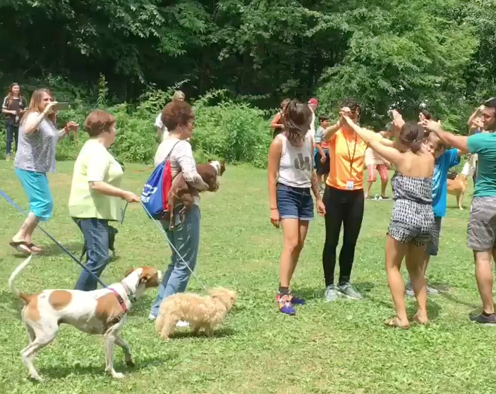 The Dog Dance